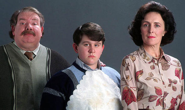 the-dursleys-in-harry-potter-307910